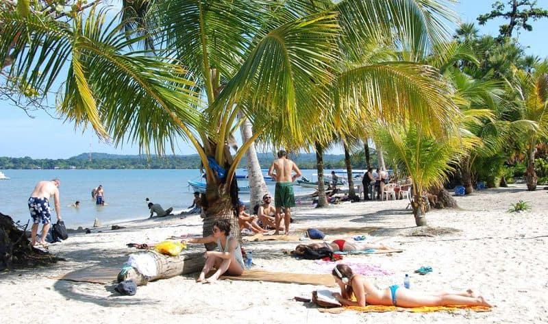 guatemala-rio-dulce-playa-blanca-beach-palm