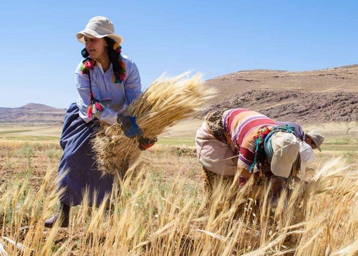 Morocco Economy
