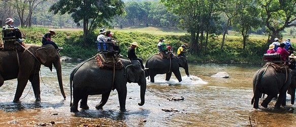 Elephant Village Pattaya
